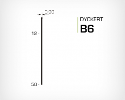 Dyckert B6